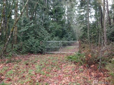 Eatonville Residential Lots & Land For Sale: 40128 Mountain Hwy E