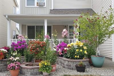Spanaway Single Family Home For Sale: 17716 2nd Av Ct E