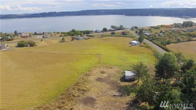 Coupeville Single Family Home For Sale: 774 Power Rd