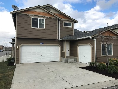 Skagit County Single Family Home For Sale: 4463 Steves Alley