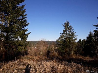 Centralia Residential Lots & Land For Sale: 192 Brier Rd