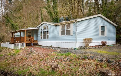 Port Orchard Single Family Home For Sale: 2515 E Williams Lane