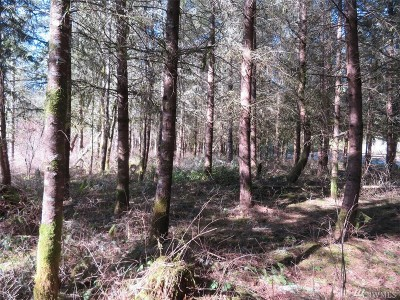 Tenino Residential Lots & Land For Sale: McIntosh Lane SE