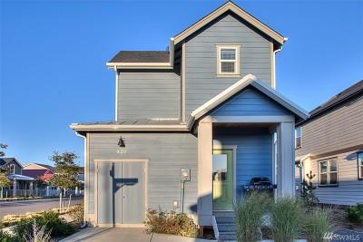 Grays Harbor County Single Family Home For Sale: 420 Vine Maple Lane SW