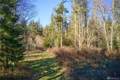 Camano Island Residential Lots & Land For Sale: 218 W Mountain View Rd