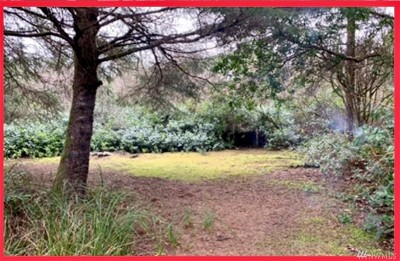Residential Lots & Land For Sale: 328 Orion Ave SW