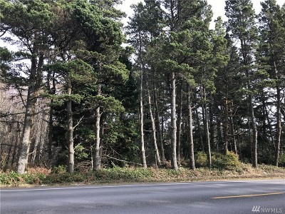 Residential Lots & Land For Sale: 16505 Pacific Hwy Midway Acres