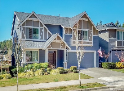 Gig Harbor Single Family Home For Sale: 10250 Sentinel Lp