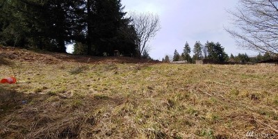 Residential Lots & Land For Sale: Mary Hill Dr #Lot 4