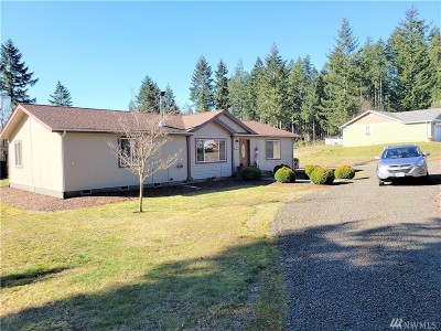 Mason County Single Family Home For Sale: 1053 E Victor Rd