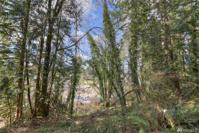 Olympia, Tumwater, Lacey Residential Lots & Land For Sale: 10224 Kiwa Dr SE