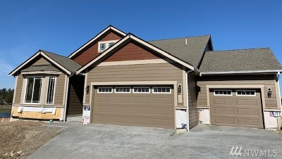 Single Family Home For Sale: 9636 9th Ave SE