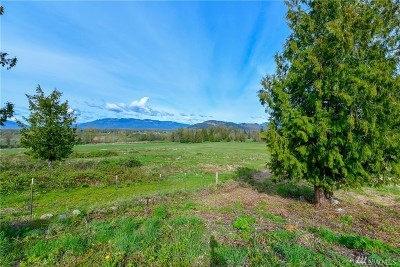 Skagit County Residential Lots & Land Pending Feasibility: 19 Sunrise Dr