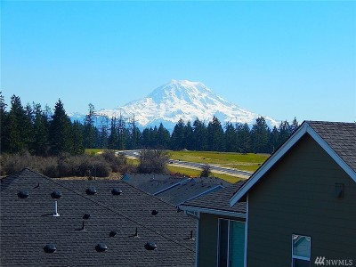 Spanaway Single Family Home For Sale: 2005 196th St Ct E