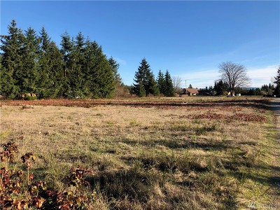 Yelm Residential Lots & Land For Sale: 17504 Sr 507 SE
