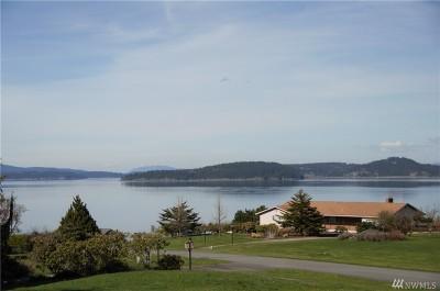 Oak Harbor Single Family Home For Sale: 3019 Mount Baker Cir