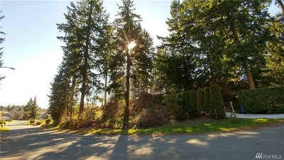 Residential Lots & Land For Sale: 181st Ave E