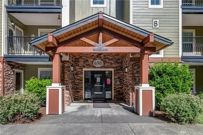 Whatcom County Condo/Townhouse Sold: 690 32nd St #B308
