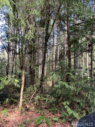 Yelm Residential Lots & Land For Sale: 22622 SE Brookside Ct