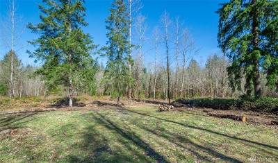 Residential Lots & Land For Sale: 227 Palmer Rd