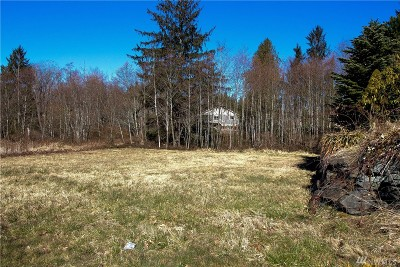 Sedro Woolley Residential Lots & Land For Sale: 850 Portobello Ave