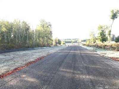 Residential Lots & Land For Sale: 142 Babcock Lane