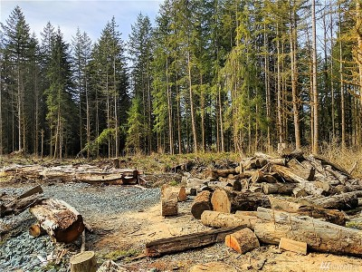 Snohomish Residential Lots & Land For Sale: 16 50th St NE