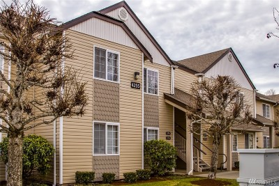Whatcom County Condo/Townhouse Sold: 4255 Wintergreen Circle #274