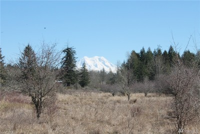 Yelm Residential Lots & Land Pending Inspection: Neat Rd SE