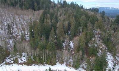 Sedro Woolley Residential Lots & Land For Sale: S Skagit Hwy N