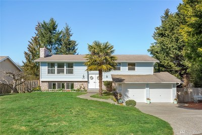 Pierce County Single Family Home For Sale: 3709 Wilkinson Lane