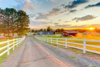 Single Family Home For Sale: 875 S Crestline Rd