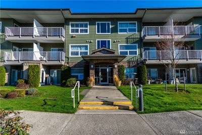 Bellingham Condo/Townhouse Sold: 512 Darby Dr #315
