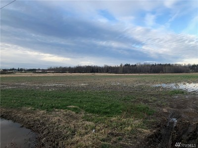 Ferndale Residential Lots & Land For Sale: 12345 Lampman Rd