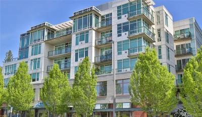 Condo/Townhouse Sold: 1188 106th Ave NE #222