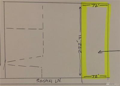 Pierce County Single Family Home For Sale: 111 Sasaki Lane SW