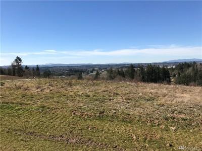 Residential Lots & Land For Sale: 117 Yeti Lane