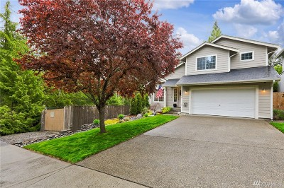Gig Harbor Single Family Home For Sale: 2404 53rd St Ct NW