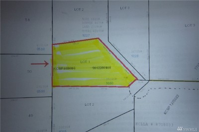 Woodinville Residential Lots & Land For Sale: 16114 NE 179th St