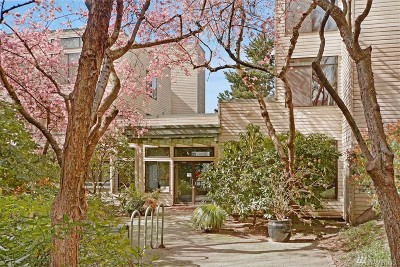 Condo/Townhouse Sold: 211 Summit Ave E #N101