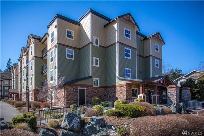 Bellingham Condo/Townhouse Pending: 680 32nd #C202