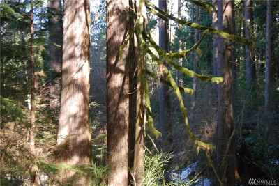 Snohomish County Residential Lots & Land For Sale: N Lake Cochran Rd