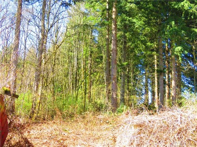 Snohomish County Residential Lots & Land For Sale: 17710 Clover Rd