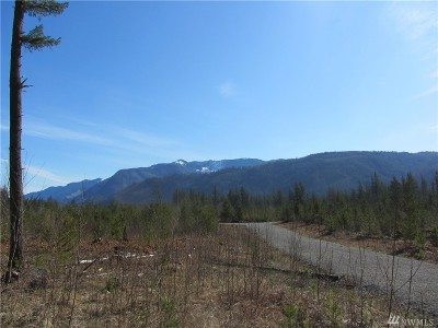 Sumas Residential Lots & Land For Sale: 9246 Heady Rd