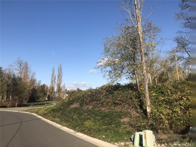 Steilacoom Residential Lots & Land For Sale: 901 4th St