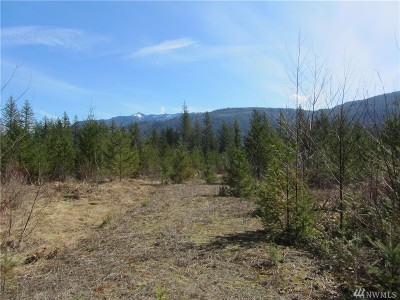 Sumas Residential Lots & Land For Sale: 9126 Heady Rd