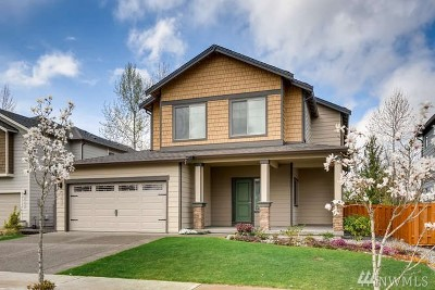 Buckley Single Family Home For Sale: 451 Nelson St