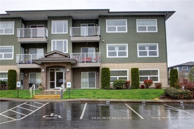 Bellingham WA Condo/Townhouse For Sale: $295,000