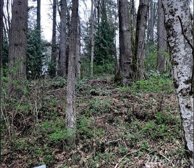 Sedro Woolley Residential Lots & Land For Sale: Ash Wy