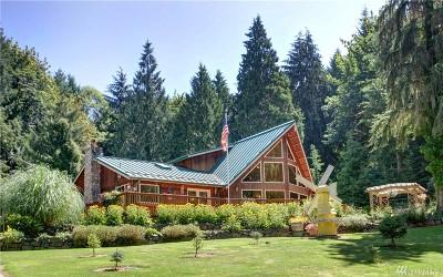 Eatonville Single Family Home For Sale: 51207 Lillie Dale Rd E